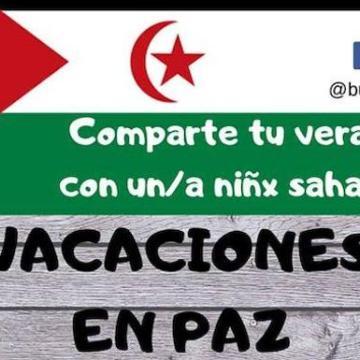 La Asociación del Pueblo Saharaui busca familias de acogida en Miranda | BURGOSconecta