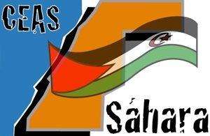 """""""La actual situación debe animar al Gobierno español a implicarse más para una solución pacífica en el Sahara Occidental"""": CEAS-Sahara   Sahara Press Service"""