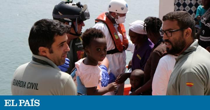 El Gobierno prevé empezar a quitar las concertinas antes de final de año   España   EL PAÍS
