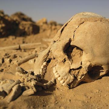 El Genocidio de Um Draiga, Sáhara Occidental, extracto del artículo »Marruecos y el genocidio saharaui del que nadie quiere hablar» de ECSaharaui