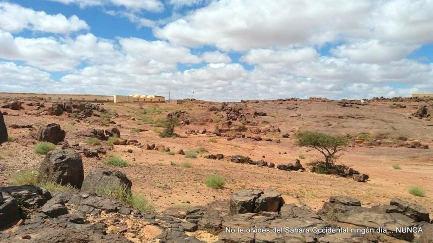 La Actualidad Saharaui de HOY, 18 de agosto de 2019 🇪🇭