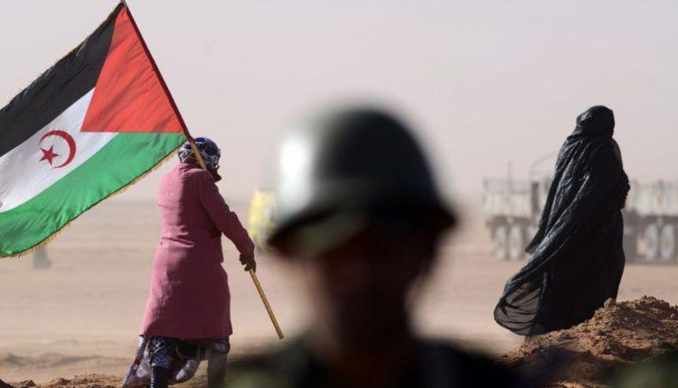 Sahara Occidental: le Maroc accuse les Emirats Arabes Unis de soutenir le Front Polisario