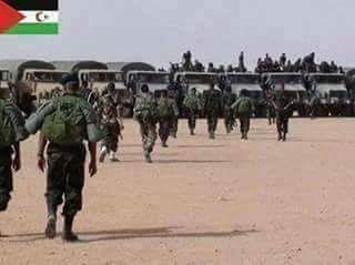 CIA revela que el Polisario pudo doblegar a Marruecos