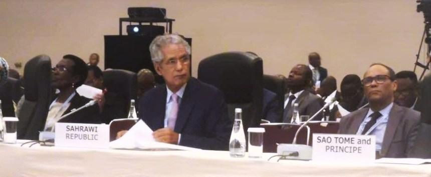 Canciller saharaui participa en la reunión ministerial para la cumbre África-Japón, TICAD 7   Sahara Press Service