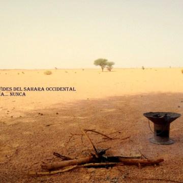 La Actualidad Saharaui: 21 de septiembre de 2019 🇪🇭
