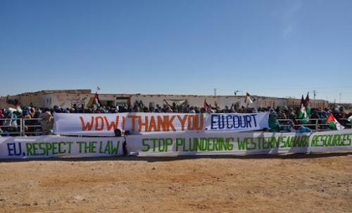 ONG pide a la ONU que condene a Marruecos por saquear recursos del Sáhara Occidental   DIARIO LA REALIDAD SAHARAUI