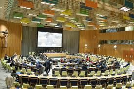 4è commission : les pétitionnaires appellent à tenir un référendum d'autodétermination au Sahara Occidental | Sahara Press Service