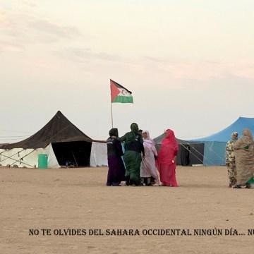 La Actualidad Saharaui: 4 de noviembre de 2019 🇪🇭