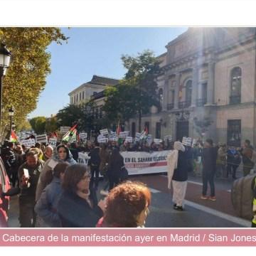 Multitudinaria manifestación en Madrid para denunciar la ocupación del Sáhara Occidental   Tercera Información