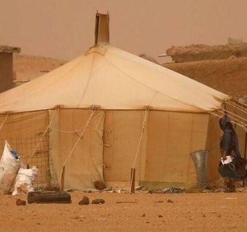 Delegaciones internacionales constatan situación del pueblo saharaui | Noticias | teleSUR