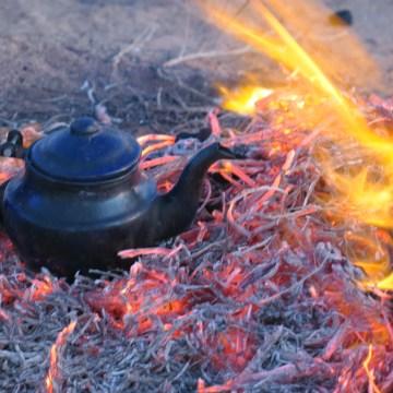 La Actualidad Saharaui: 14 de febrero de 2020 (fin de jornada) 🇪🇭