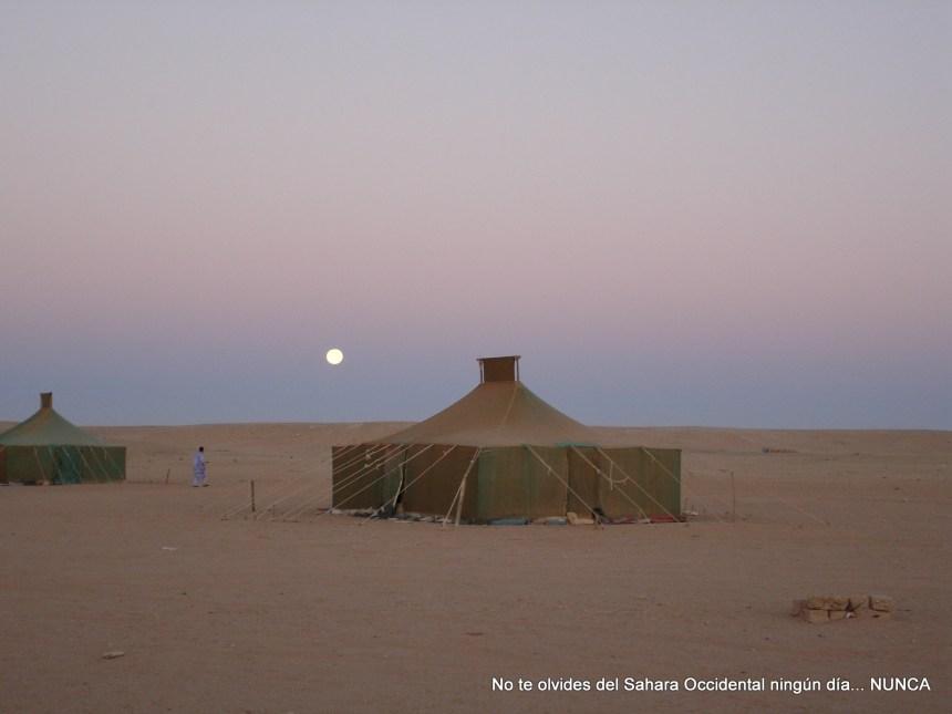 La Actualidad Saharaui: 24 de marzo de 2020 ( fin de jornada) 🇪🇭