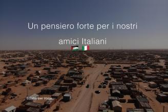 Saharauis lanzan una campaña de solidaridad con España, Italia y Argelia | noticiasdenavarra.com