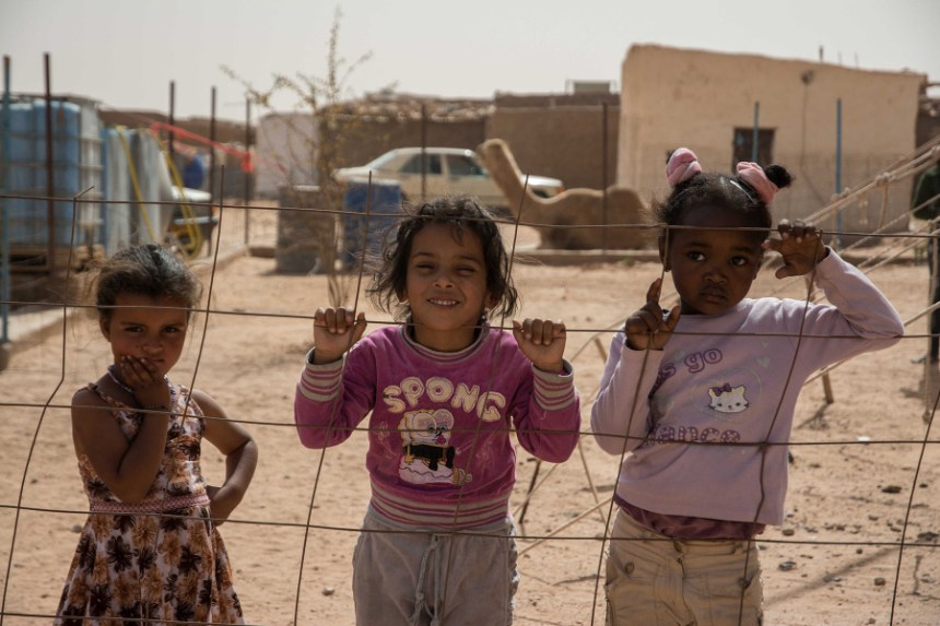 #VacacionesEnPaz2020 | Delegación del Frente Polisario en España: no se ha tomado ninguna decisión sobre la cancelación o no de las mismas