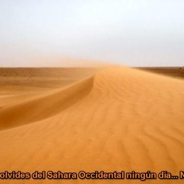 La Actualidad Saharaui: 29 de mayo de 2020 🇪🇭
