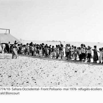 La Actualidad Saharaui: 20 de mayo de 2020 (fin de jornada) 🇪🇭