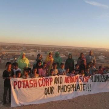 Insta al gobierno de Nueva Zelanda a detener los envíos de «fosfato de sangre» del Sáhara Occidental