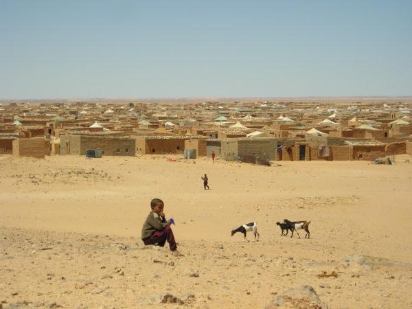 La OMS alerta del riesgo de levantar el Estado de Alarma apresuradamente en el Sahara – El Faradio