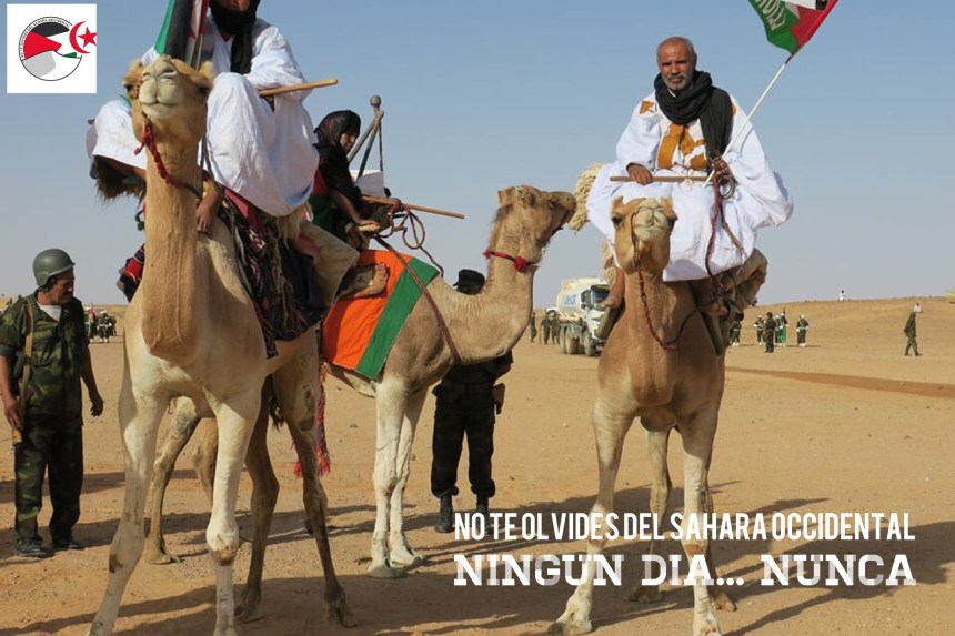 La Actualidad Saharaui: 14 de junio de 2020 🇪🇭