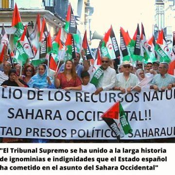 Denuncian desde Andalucía los «rotos en la coherencia jurídica» del Estado español en el Sahara Occidental | Sahara Press Service