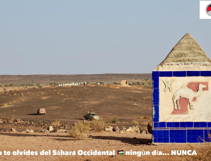 La Actualidad Saharaui: 11 de julio de 2020 🇪🇭