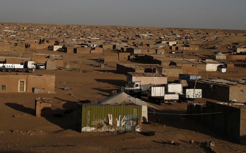 Según ACNUR: Los refugiados del Sahara Occidental en los campamentos de Tinduf afectados por una epidemia de ganado