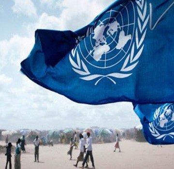 Le crime organisé au Sahel «continue d'évoluer» autour du haschich marocain   Sahara Press Service