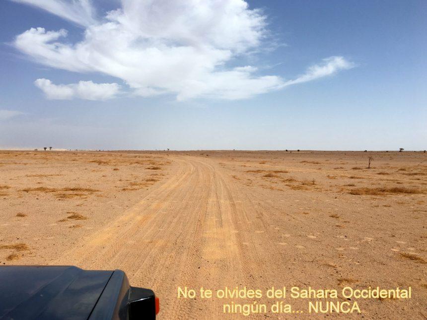 La Actualidad Saharaui: 6 de septiembre de 2020 🇪🇭