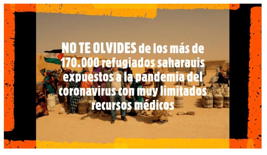 ¡ÚLTIMAS noticias – Sahara Occidental! | 6 de septiembre de 2020