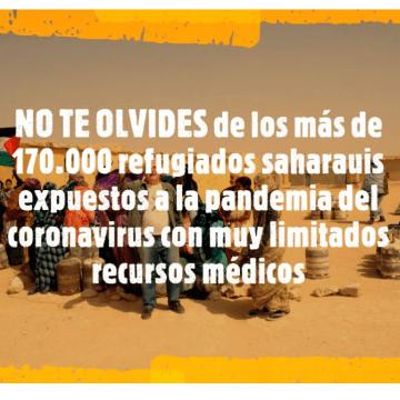 ¡ÚLTIMAS noticias – Sahara Occidental! | 2 de septiembre de 2020 🇪🇭