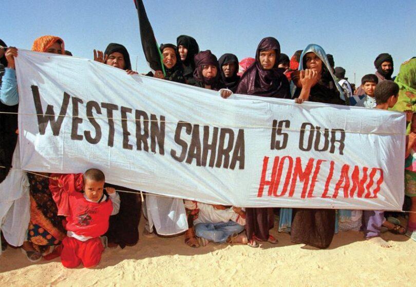 Western Sahara Campaign UK: exige al CS la concreción de una fecha para celebrar un referéndum de autodeterminación en el Sáhara Occidental | El Portal Diplomático