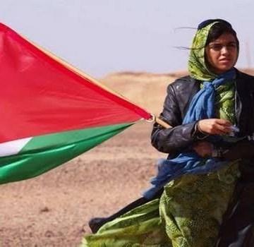 La Actualidad Saharaui: 27 de octubre de 2020 🇪🇭