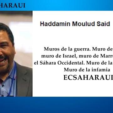 NN.UU y su perversión del lenguaje en el Sáhara Occidental