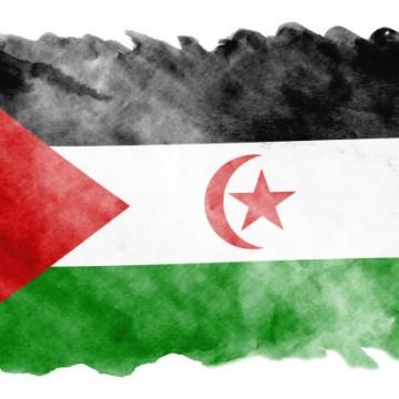 Exterminio Saharaui – UNIDADES DE CARBONO