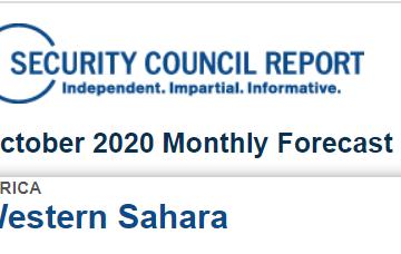 Nota informativa DEL CONSEJO DE SEGURIDAD SOBRE EL SAHARA OCCIDENTAL | Hoy 14 de octubre, se llevarán a cabo consultas sobre la MINURSO con el Representante Especial y jefe de la MINURSO, Colin Stewart