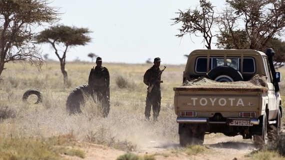 GUERRA EN EL SAHARA | Parte de Guerra N° 9 | El Ejército Saharaui bombardea posiciones enemigas en varias partes del muro