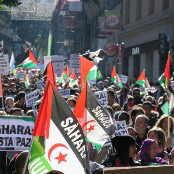 ¡ÚLTIMAS noticias – Sahara Occidental! | 12 de noviembre de 2020