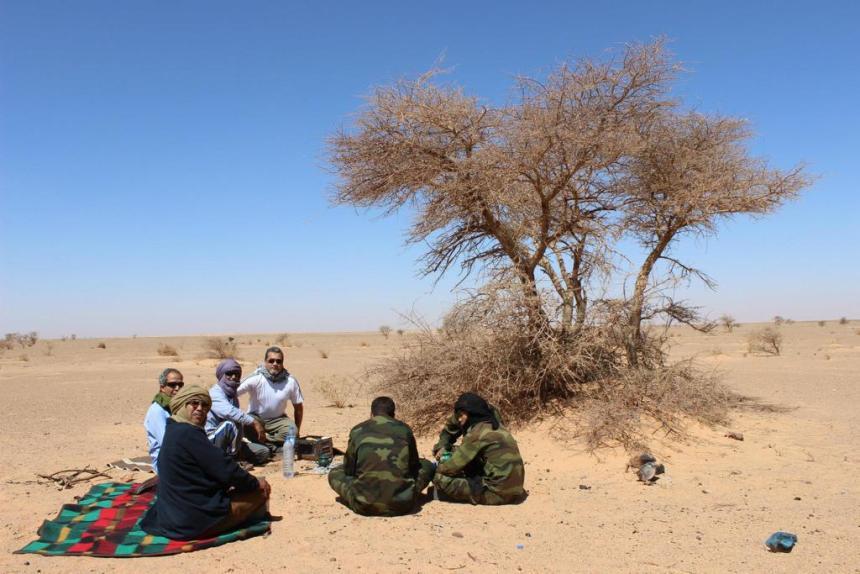 Saharauis: un pueblo cuya paciencia se agotó « Diario y Radio U Chile