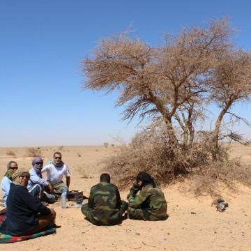 La Actualidad Saharaui: 17 de noviembre de 2020 🇪🇭