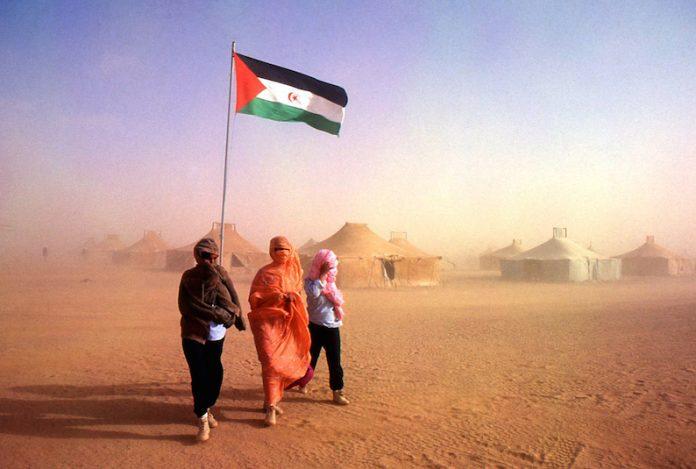 Diario16 apoya al pueblo saharaui – Diario16