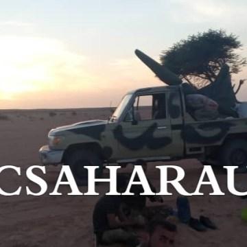 GUERRA EN EL SAHARA: Parte de guerra nº20