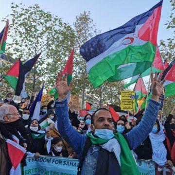 El Majzén recurre a los matones para contrarrestar las multitudinarias manifestaciones de la diáspora saharaui en Europa   El Portal Diplomático