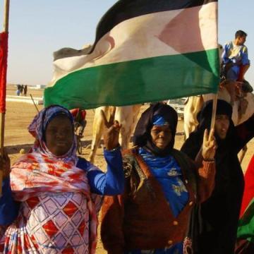 El Sáhara occidental y la vuelta a las armas, por Juan Soroeta | AraInfo