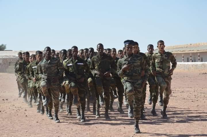 Crece de manera excepcional el alistamiento al ejército saharaui