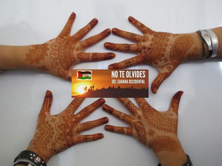 ¡ÚLTIMAS noticias – Sahara Occidental! 11 de abril de 2021
