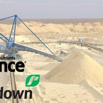PILLAJE RECURSOS NATURALES SAHARAUIS | Denuncian a las empresas neozelandesas Ravensdown y Ballance Agri Nutrients por el saqueo ilegal del fosfato saharaui junto a Marruecos