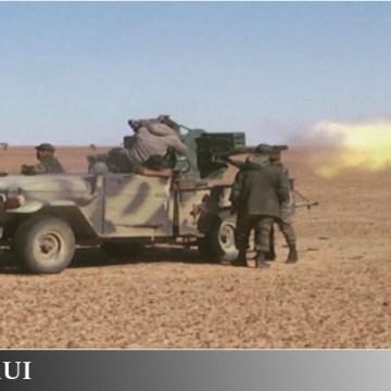 »Teme a Dios, Mojtar»: Episodios de la Guerra de Liberación del Sáhara Occidental