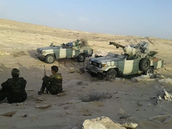 GUERRA DEL SAHARA | Parte de guerra Nº142