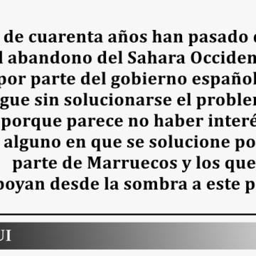 España no debe seguir dando la espalda al pueblo saharaui