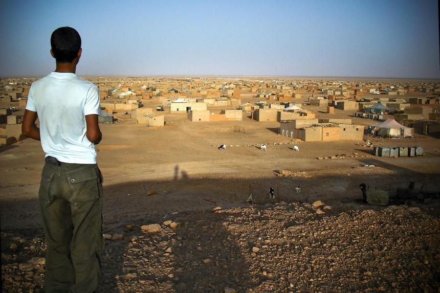 Juventud saharaui, la convicción y la lucha de una generación que anhela conocer su tierra | Sahara Press Service